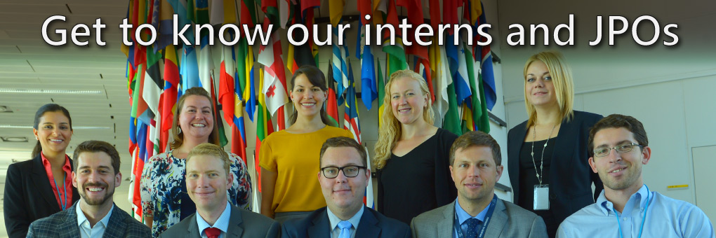 Meet our interns and JPOs!